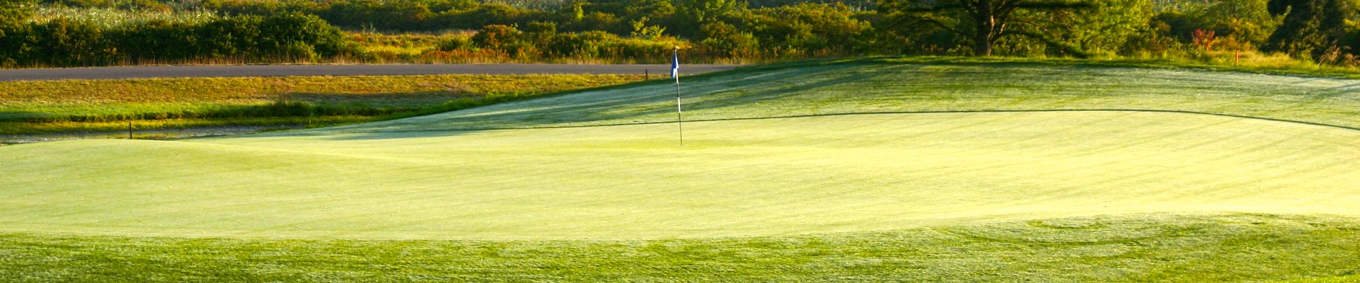 swan lake golf course coupons